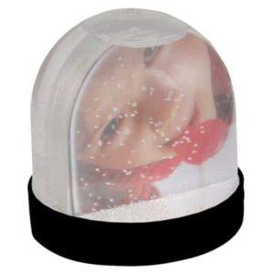 buy Picture Snow Globe