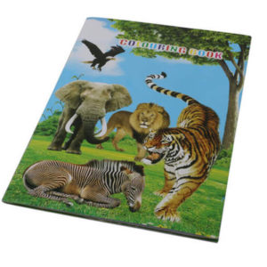 buy Wildlife Stickers & Colouring Book