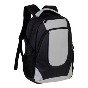 buy Exclusive Padded Laptop Backpack