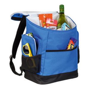buy Picnic Backpack Cooler