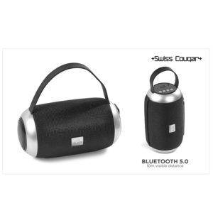 buy Swiss Cougar London Bluetooth Speaker & FM Radio